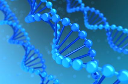 HPV-DNA Test